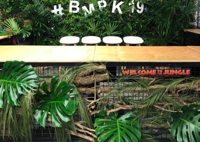 BMPK IT-Kongress, Mai 2019